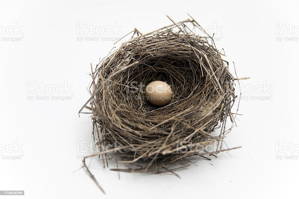 Bird's Nest with Egg royalty-free stock photo
