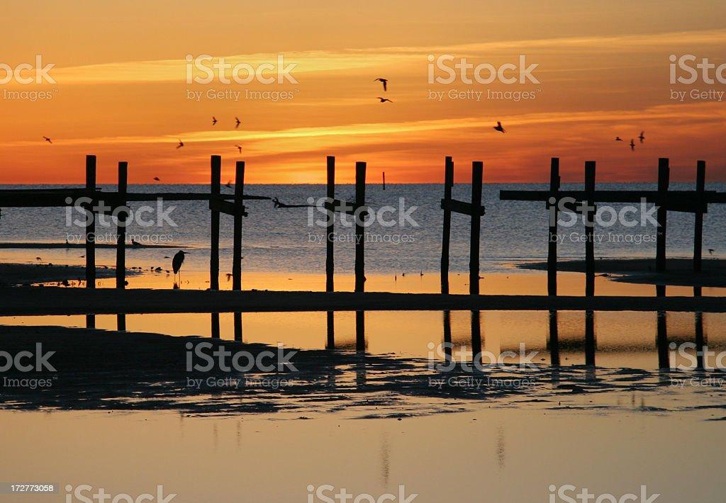 birds pier sunrise stock photo