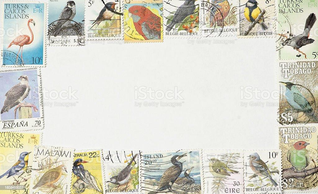 Birds Postage Stamps Photo Frame royalty-free stock photo