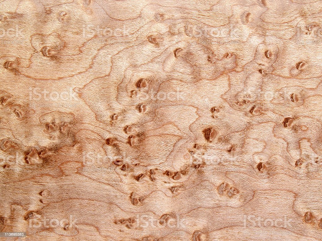 Bird's-Eye Maple Wood Background Texture royalty-free stock photo