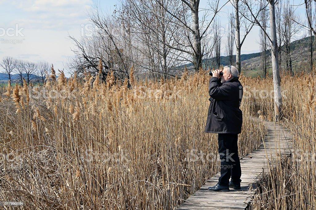 Birdwatcher with binoculars stock photo