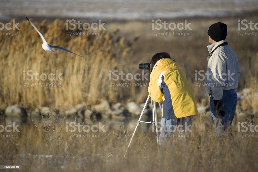 Birdwatching Couple stock photo