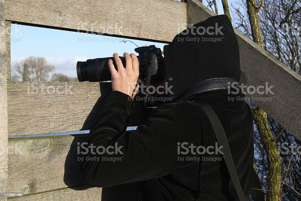 Birdwatching stock photo
