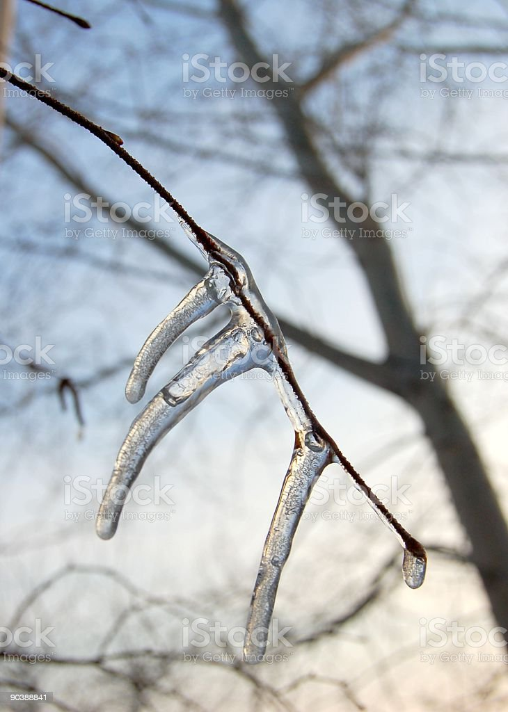 Birth of an Icicle royalty-free stock photo