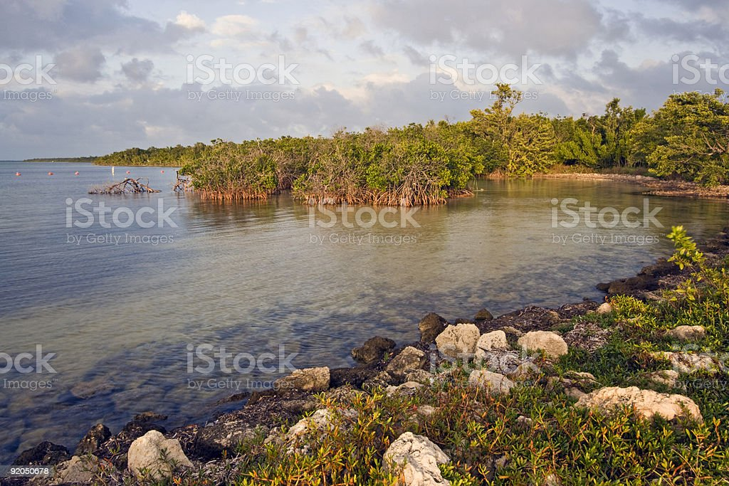 Biscayne National Park royalty-free stock photo