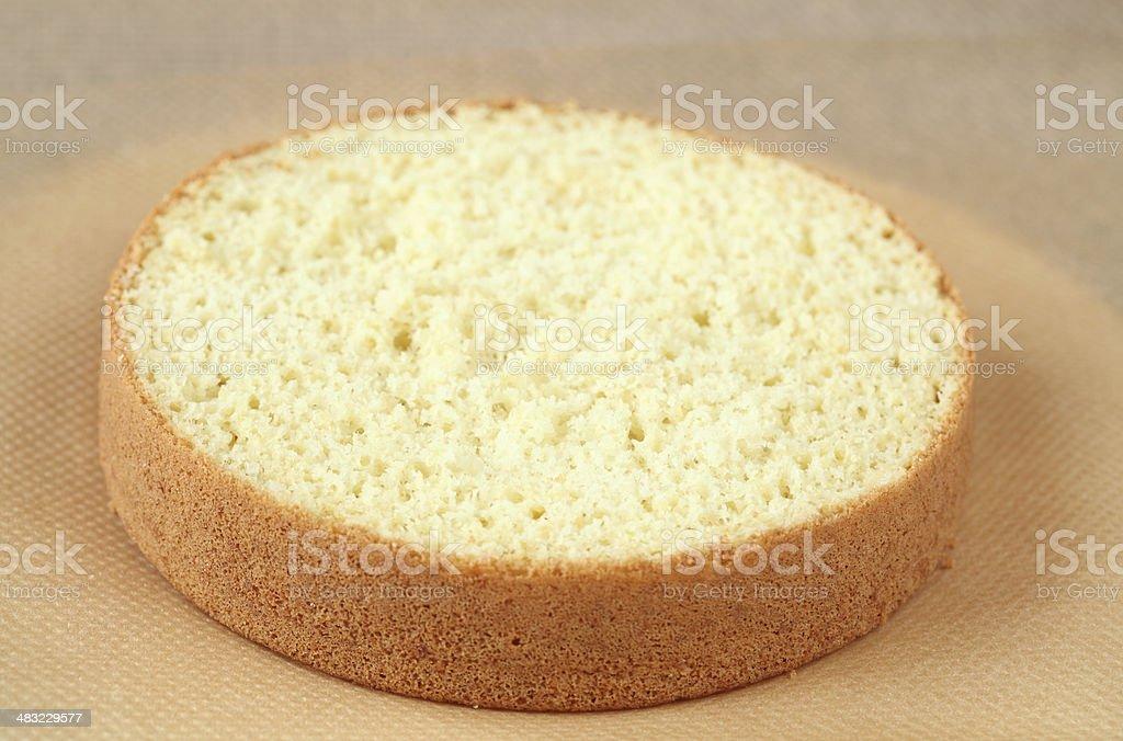 Biscuit Sponge Cake stock photo