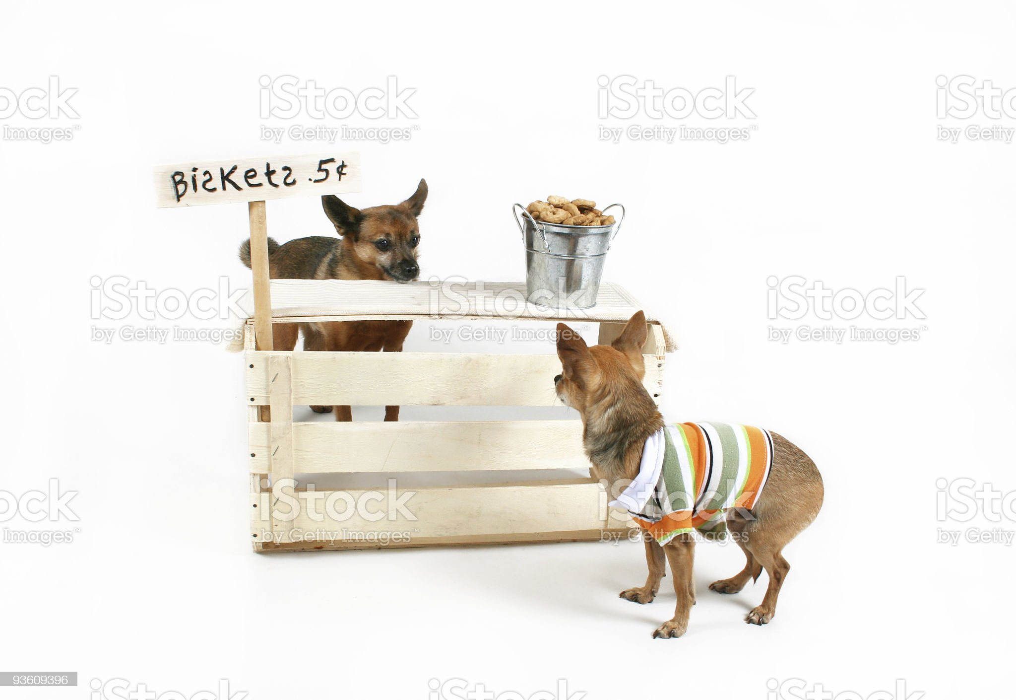 biscuit stand royalty-free stock photo