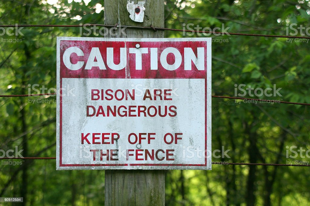 Bison are Dangerous stock photo