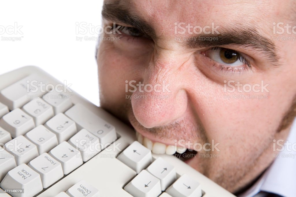 Biting keyboard royalty-free stock photo