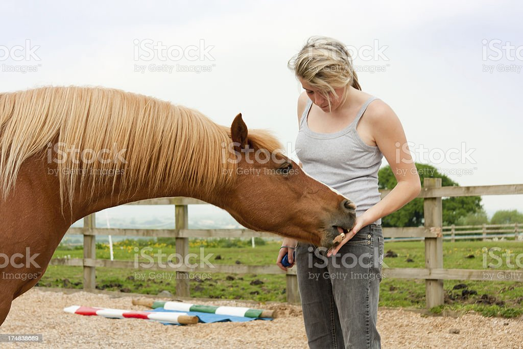 Biting the hand that feeds you. royalty-free stock photo