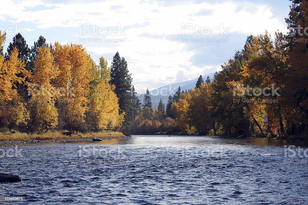 Bitterroot River in Montana stock photo