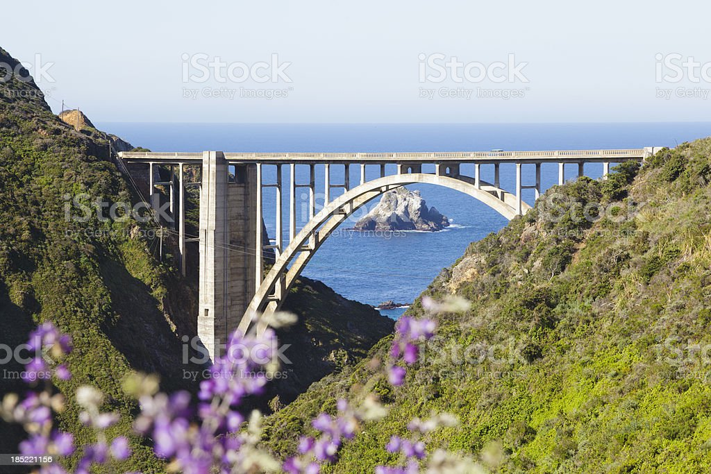 Bixby Creek Bridge, Big Sur, closeup stock photo