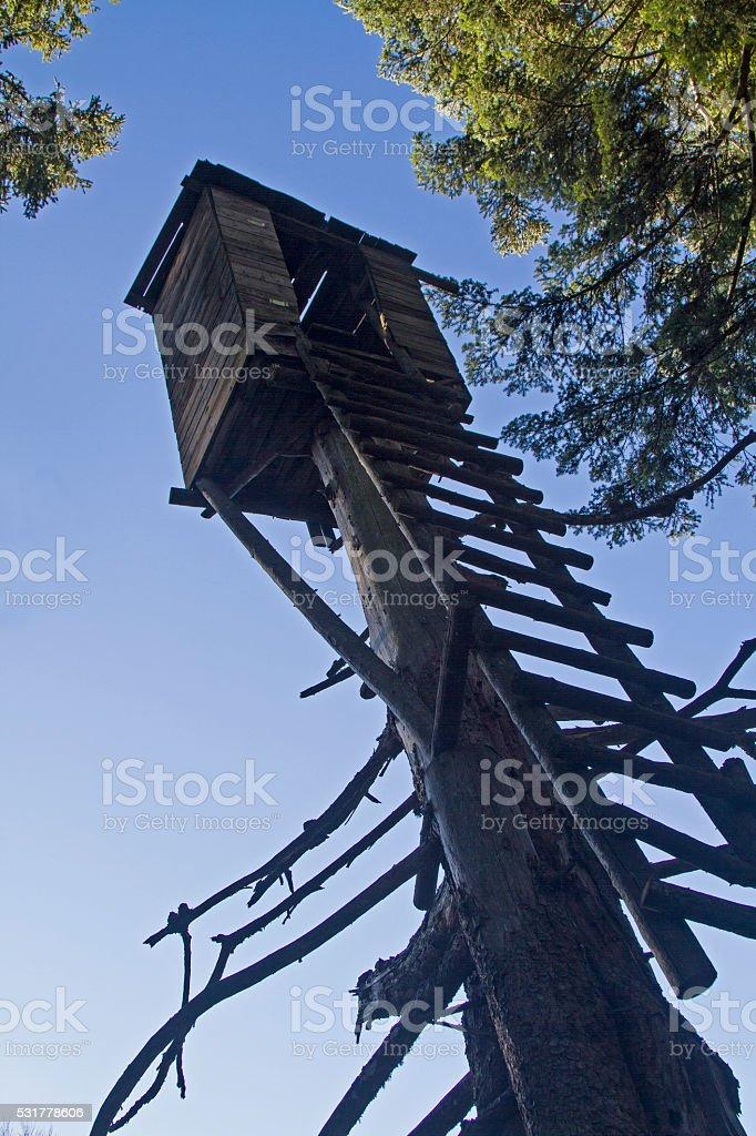 Bizarre hunting perch stock photo