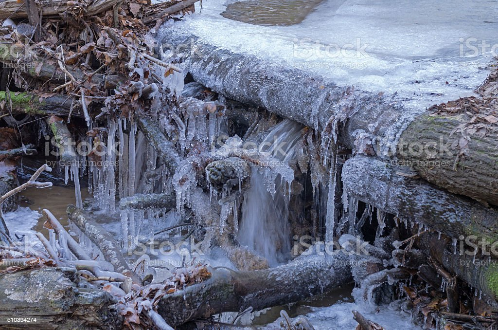 Bizarre ice figures on branches fallen in the forest stream stock photo