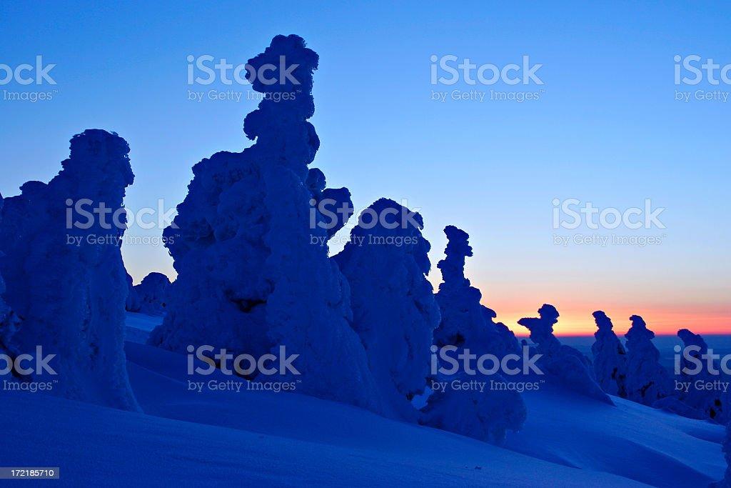 Bizarre Winter Landscape royalty-free stock photo