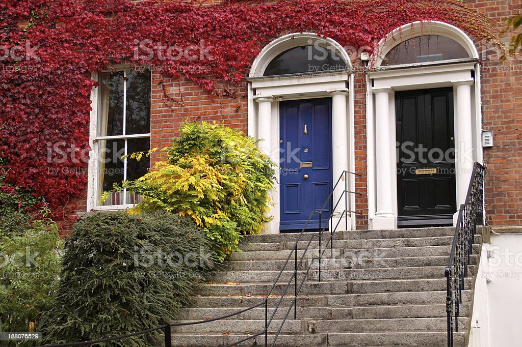 Black and Blue Dublin doors in Autumn stock photo