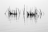 Black and white abstract lake landscape, India