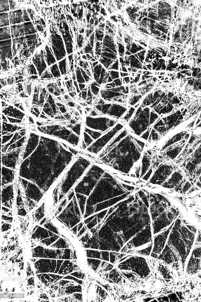 Black and white, abstract pattern of mineral in polarizing micro stock photo