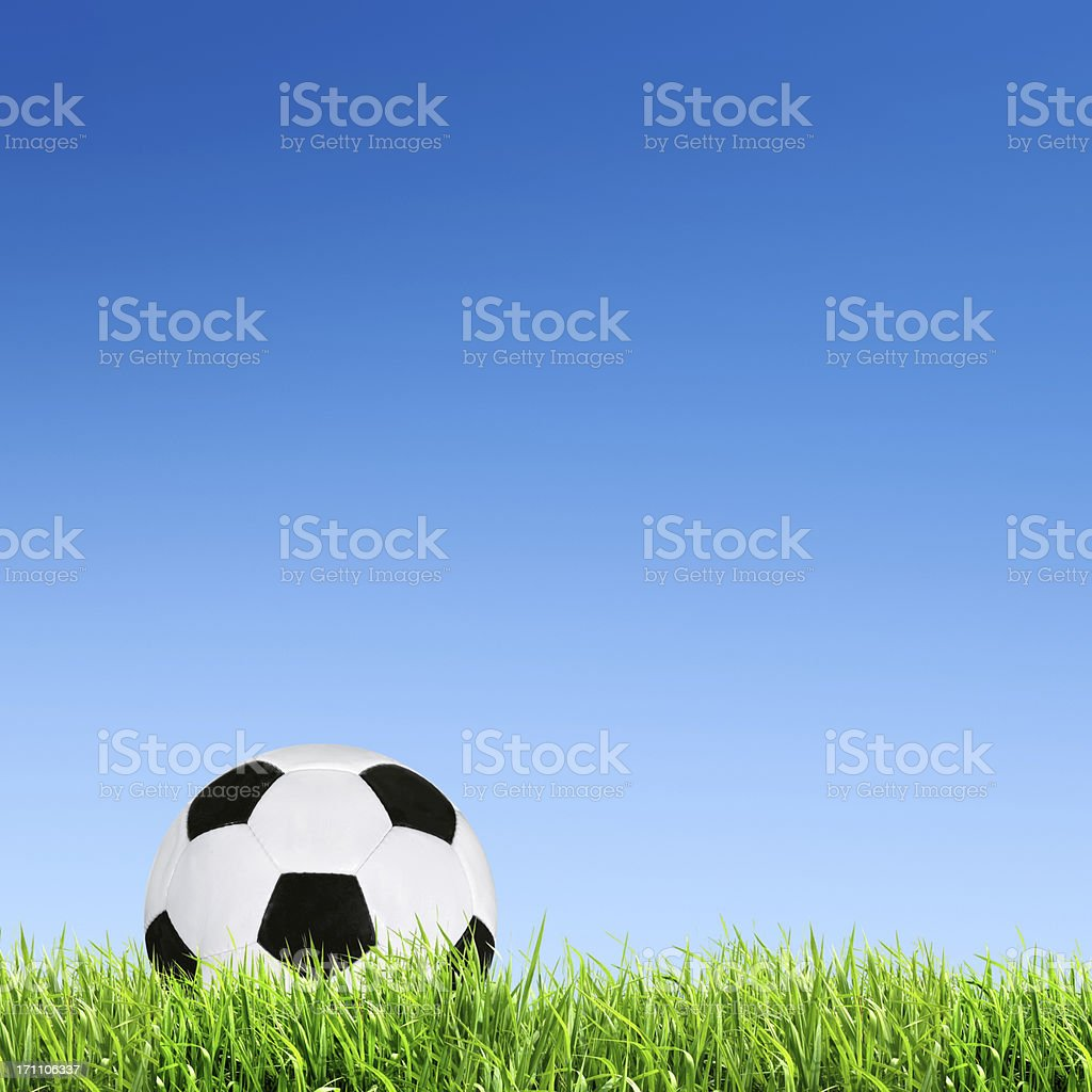 Black and white football on grass against a blue sky royalty-free stock photo