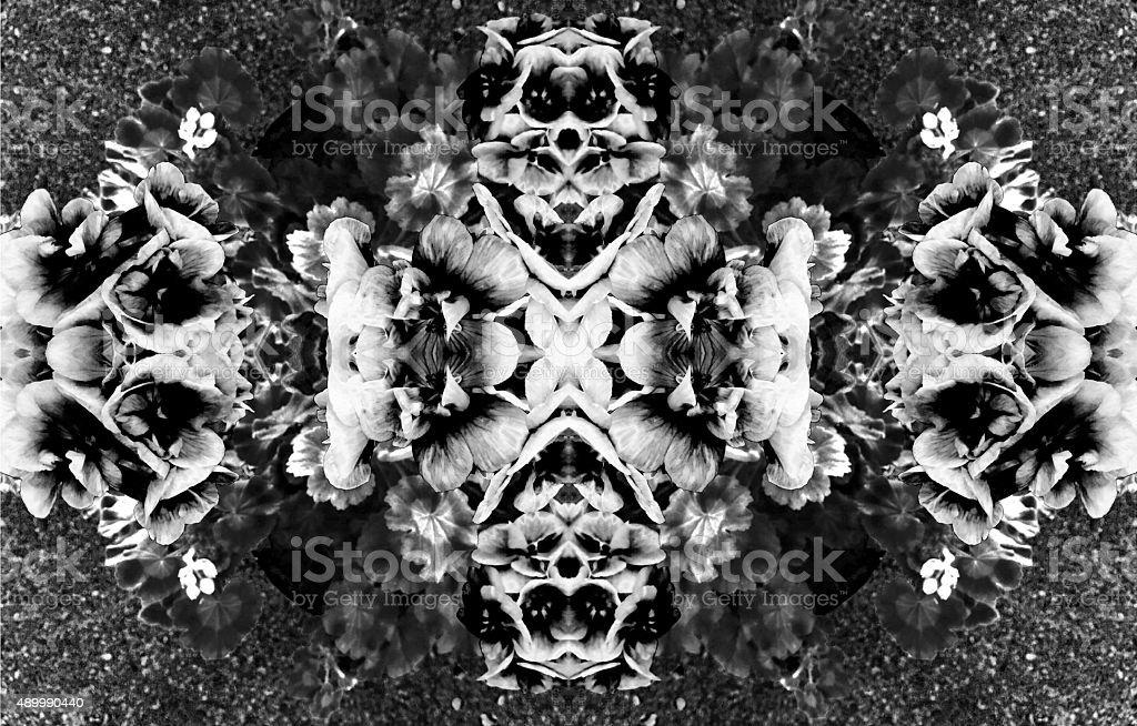 Black and White Geranium Flower Kaleidoscope Collage royalty-free stock photo