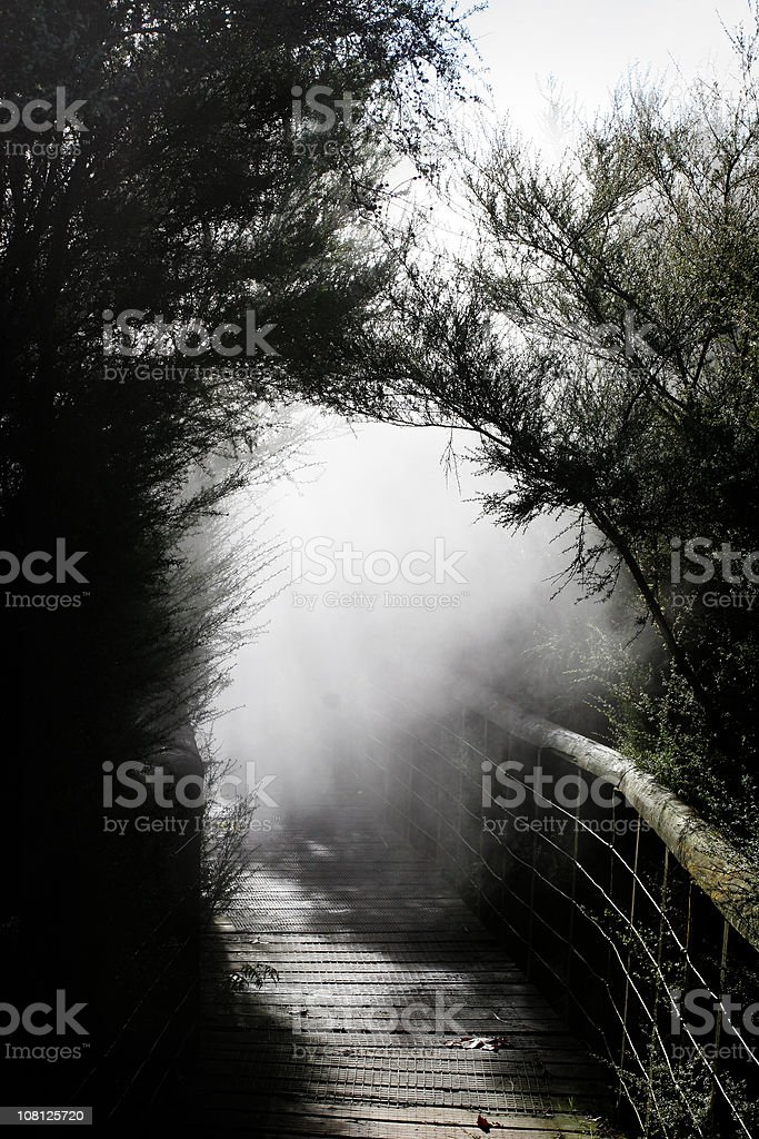 Black and White Image of Foggy Wooden Pathway royalty-free stock photo