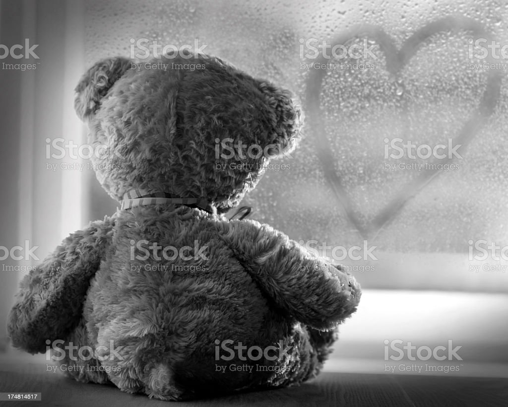 Black and white image of the back of a teddy bear at window stock photo