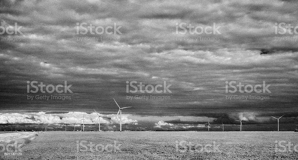 Black and White Infrared Manitoba Soybean Fields and Windmills stock photo