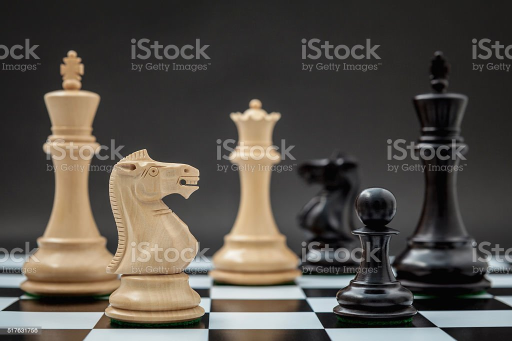 Black and White King and Knight of chess . stock photo