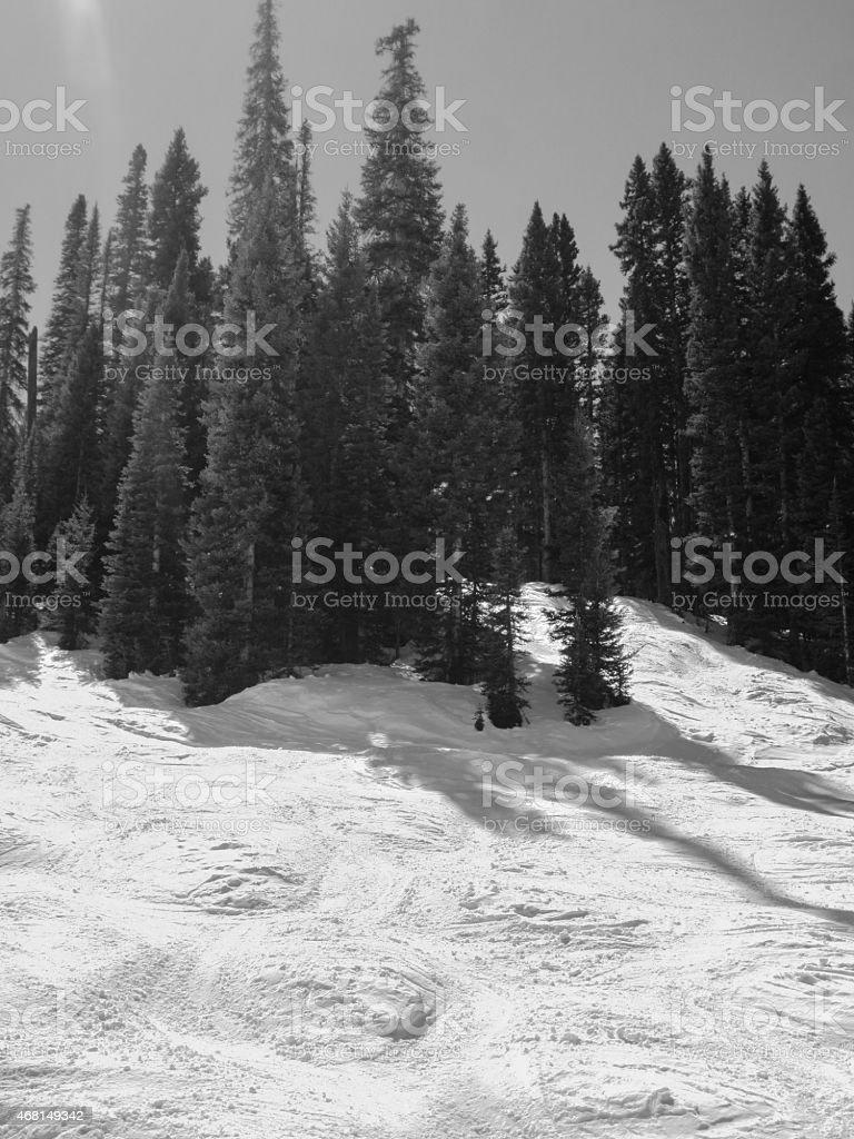 Black and white moguls with lens flare sunbeam stock photo
