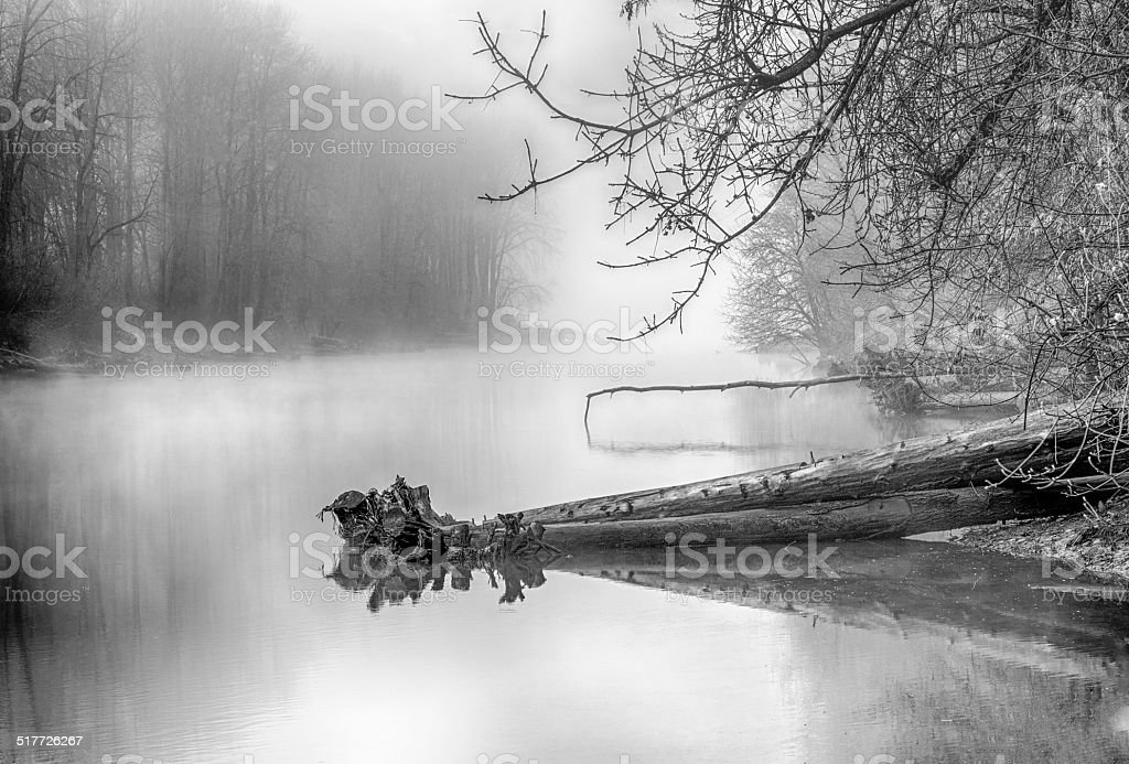 Black and white of Columbia Slough in winter Fog stock photo