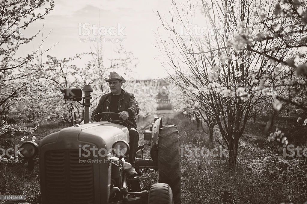 Black and white of farmer on tractor stock photo