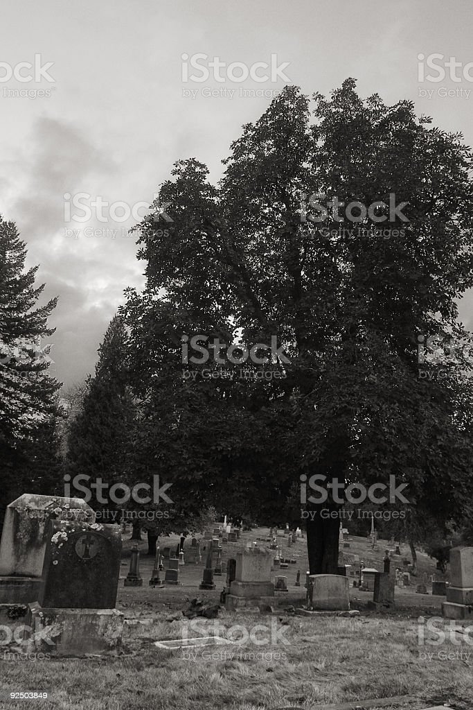 Black and White Photo of a Cemetary royalty-free stock photo