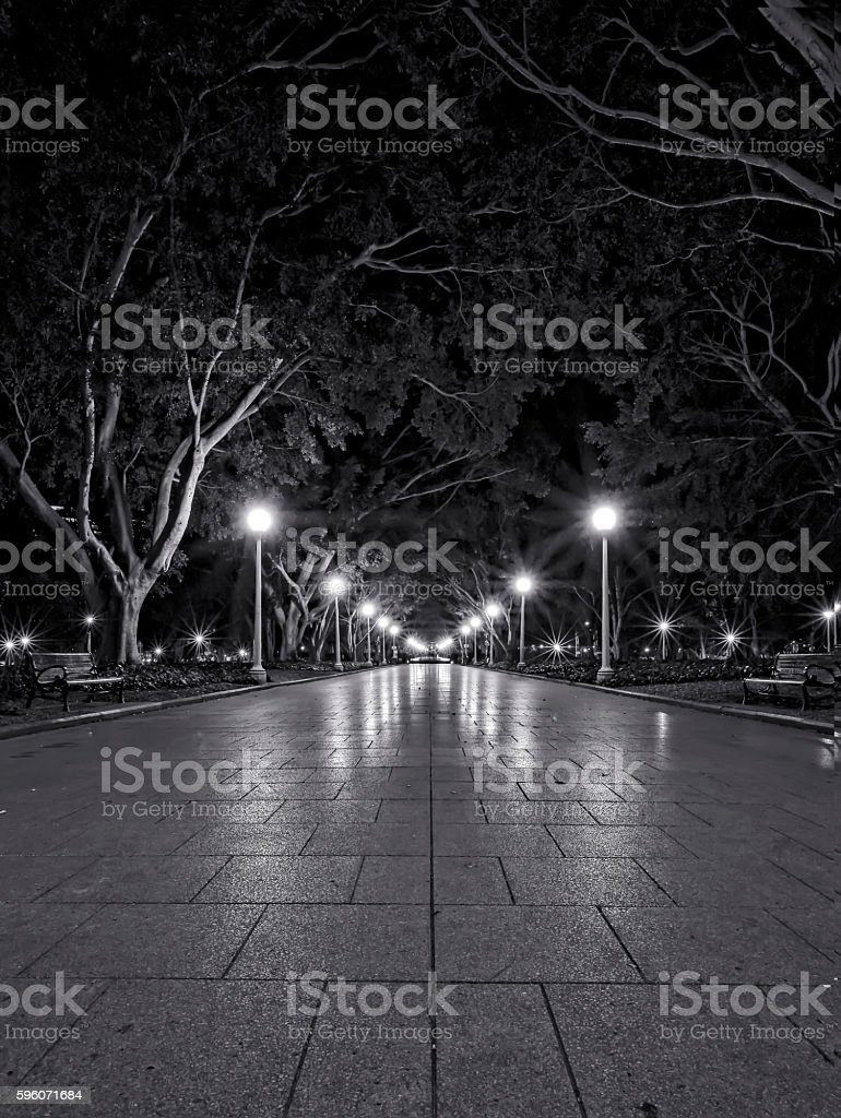 Black and white photo of park at night stock photo
