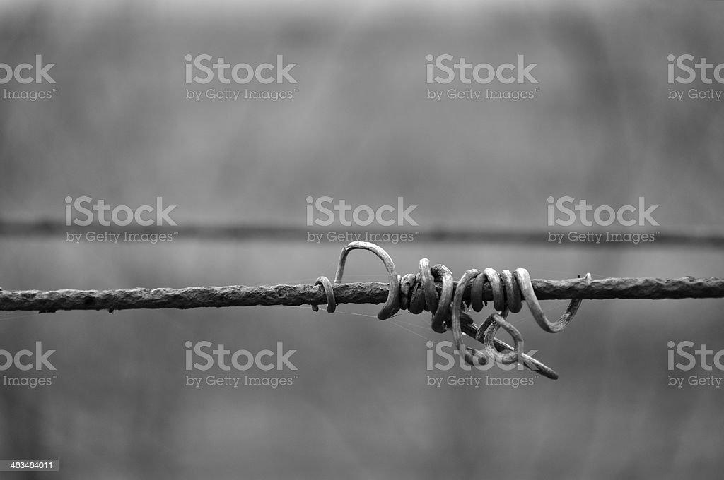 Czarno-białe zdjęcie z winorośli crook na przewodzie zbiór zdjęć royalty-free
