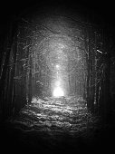 black and white, Road in magic dark forest, sun glare