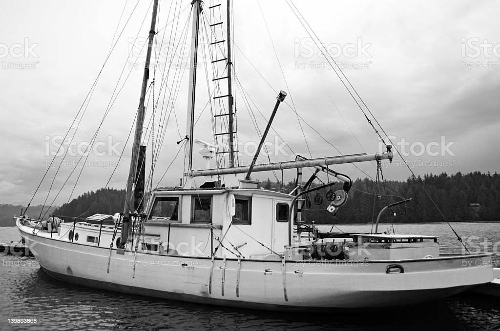 Black and White Sailboat docked in Harbor royalty-free stock photo