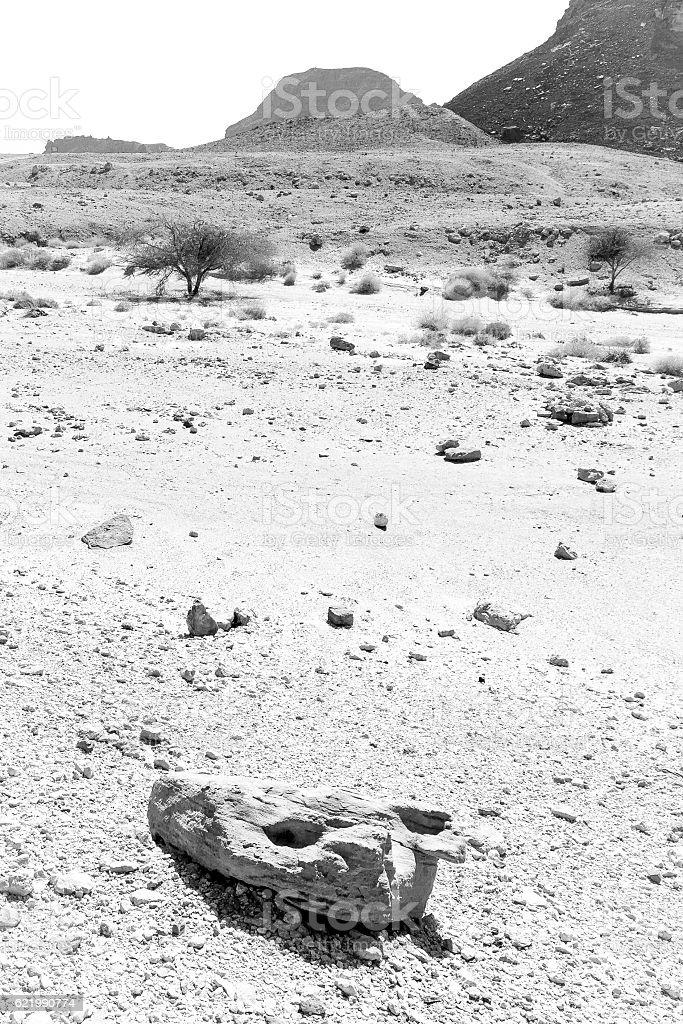 Black and white stone rock tree mountain desert composition. stock photo