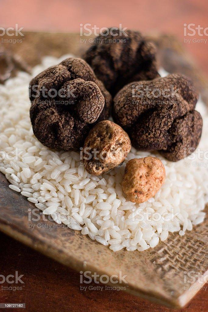 Black and White Truffles on Rice stock photo