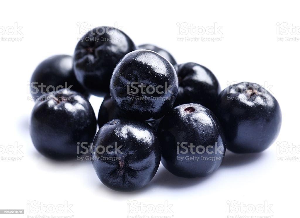 Black aronia . stock photo