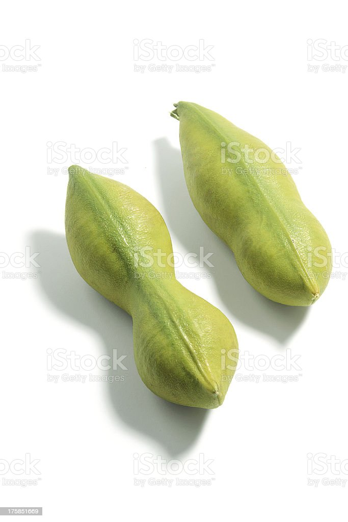 Black Bean Seed Pods royalty-free stock photo