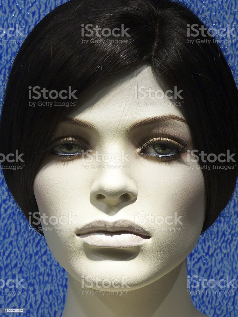 Black beauty dummy on blue royalty-free stock photo