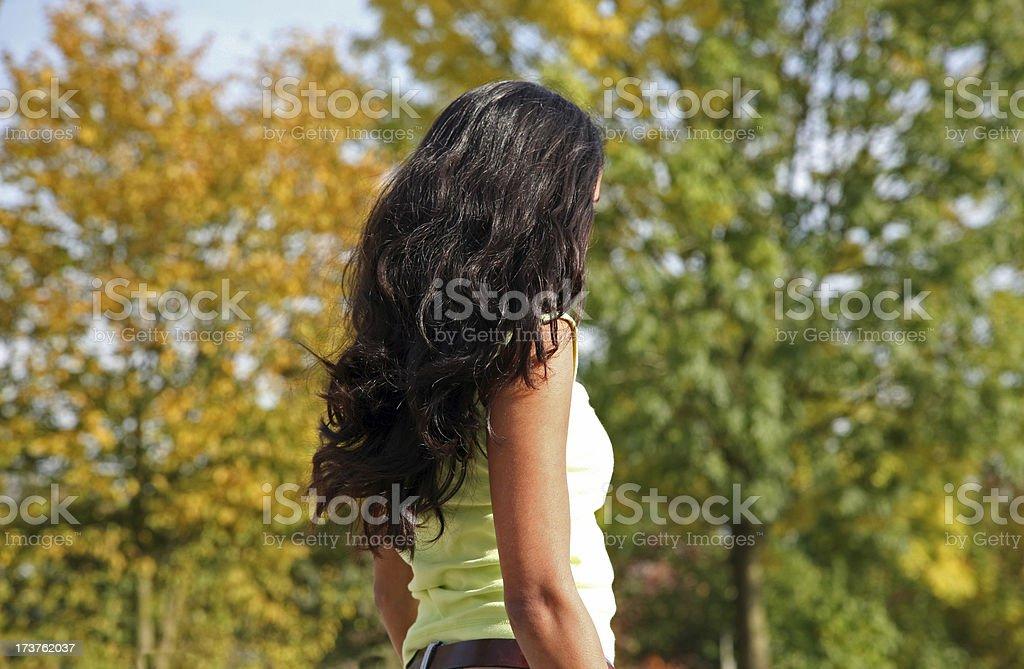 Black beauty stock photo
