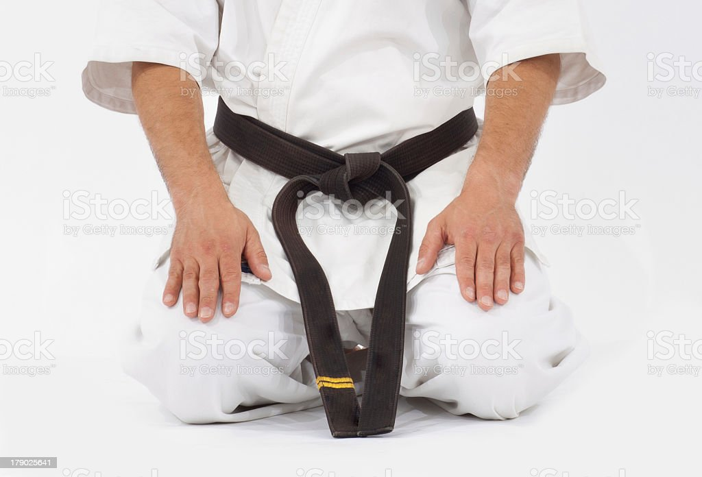 black belt stock photo