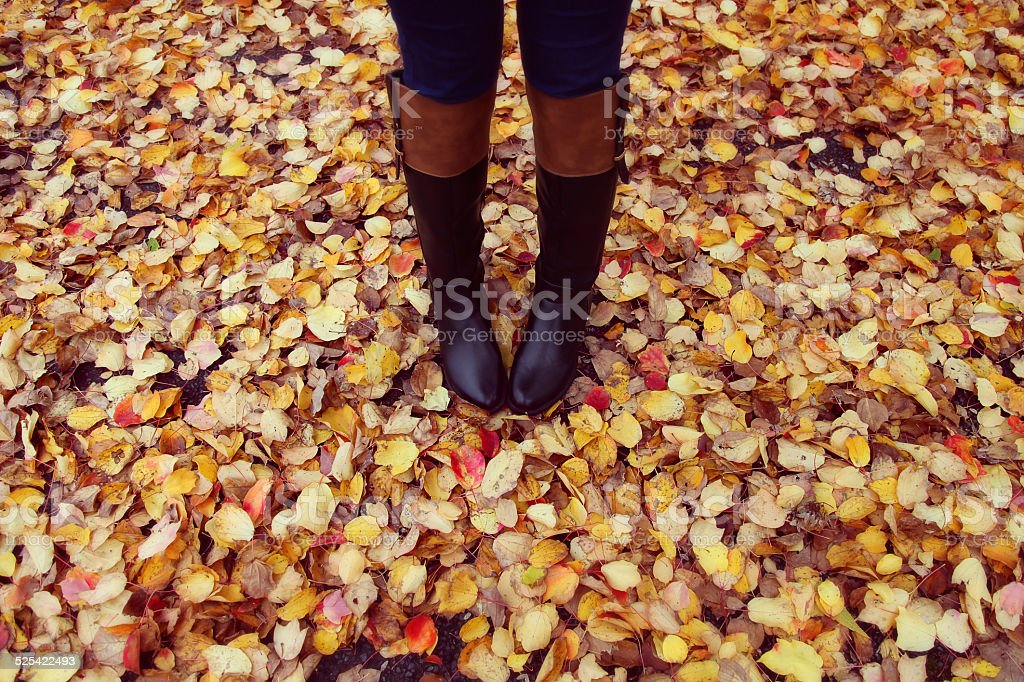 Black boots and colourful autumn leaves stock photo
