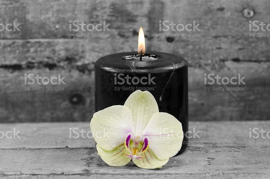 black candle and orchid royalty-free stock photo