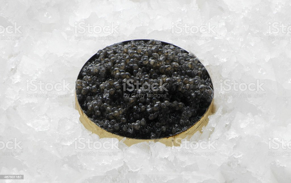 Black caviar in a bowl isolated stock photo
