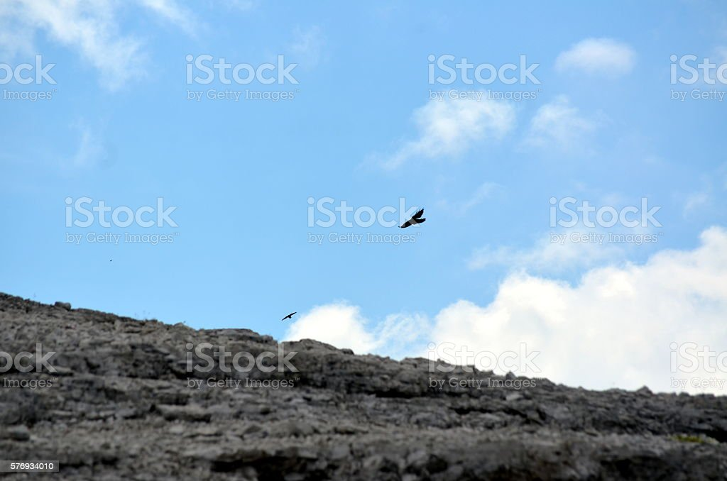 Black crow flying in the mountains between heaven and earth stock photo