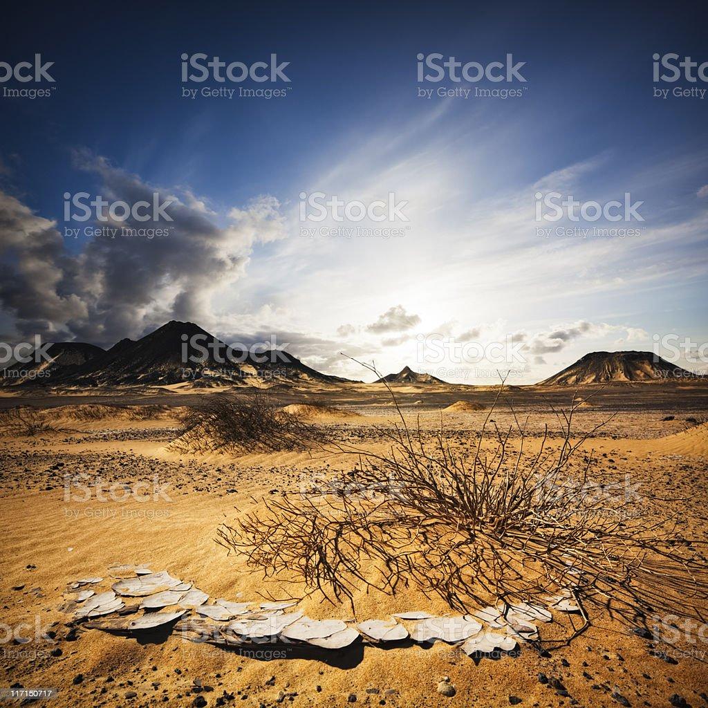 Black Desert Sunset stock photo