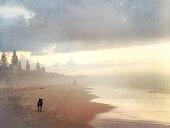 Black Dog Walking on the Beach - Vintage Effect