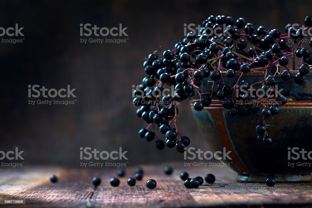 Black elderberries (Sambucus nigra) in a bowl, dark rustic wood stock photo